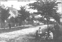 Dannebrogs Allé set mod Jyllingevej ca. 1905