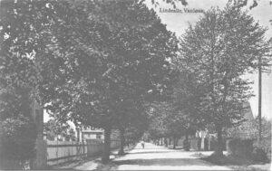 Linde Allé i 1904
