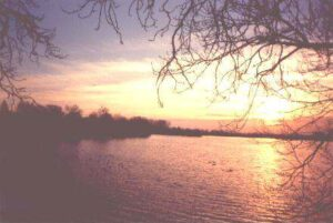 Damhussøen - Aftenstemning
